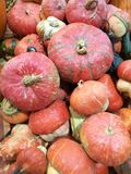 Vele pompoenen op een landbouwersmarkt stock fotografie
