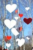 Vele Rode harten en witte harten Stock Fotografie
