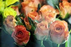 vele roze rozen voor winkels met vensterglas Royalty-vrije Stock Afbeeldingen