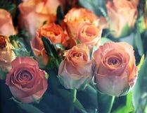 vele roze rozen voor winkels met vensterglas Stock Foto's