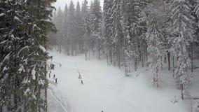 Vele skiërs en snowboarders dalen onderaan de skihelling stock video