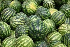 Vele smakelijke watermeloenen Royalty-vrije Stock Foto's