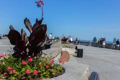 Vele toeristen bevinden zich op Kondiaronk-Belvedere Royalty-vrije Stock Foto