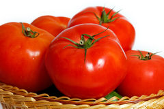 Vele tomaten in een mand Stock Foto