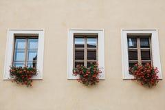 Vele vensters zijn verfraaid met mooie rode bloemen Het idee van het verfraaien van een huis met installaties stock foto's
