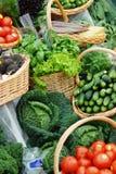 Vele verschillende ecologische groenten royalty-vrije stock afbeelding