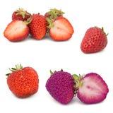 Vele verschillende reeksen aardbeien op witte achtergrond, isoleren met aardbeien, een verschillend op één blad Royalty-vrije Stock Foto