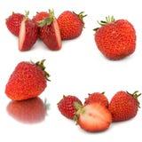 Vele verschillende reeksen aardbeien op witte achtergrond, isoleren met aardbeien, een verschillend op één blad Stock Afbeeldingen