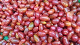 vele verse kleine glanzende organische rode tomaten Royalty-vrije Stock Afbeeldingen