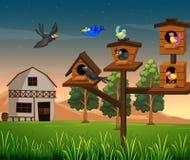 Vele vogels in vogelhuis op het landbouwbedrijf vector illustratie
