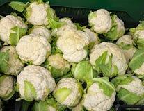Vele witte bloemkolen voor verkoop in groentehandelaars blokkeren Stock Foto's
