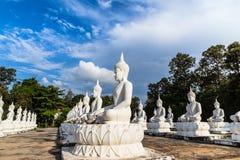 Vele witte standbeelden die van Boedha in rij op Thaise tempel zitten Stock Afbeelding
