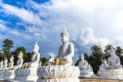 Vele witte standbeelden die van Boedha in rij in Thaise tempel zitten Stock Fotografie