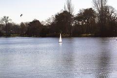 Veleiros modelo em uma lagoa em um parque em Paris Os pássaros voam, pais andam com crianças, gansos em uma lagoa fotografia de stock royalty free