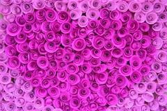Velen behangen roze rozen stock foto