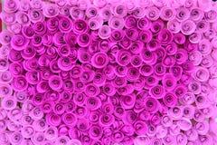 Velen behangen roze rozen stock foto's