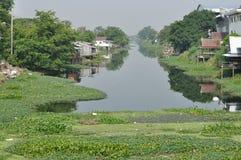 Velen geven hyacint in kanaal gemaakte watervervuiling water Royalty-vrije Stock Foto