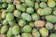 Groene Mango Stock Afbeeldingen