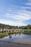 Velen het Kamperen Tent bij het Nationale Park van Khao Yai, Thailand Stock Afbeelding