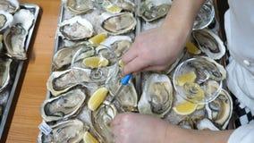 Velen openden oesters op dichte omhooggaand van de plaat hoogste mening stock video