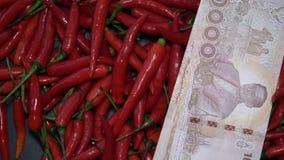 Velen Rood Chili Peppers Rotating met Thais Nationale valutabaht stock videobeelden