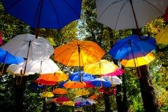 Velen, vele kleurrijke paraplu's aan de verrukking van allen stock foto's