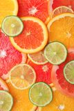 Velen verse yummy citrusvrucht stock foto's