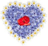 Velen wilde bloem Vorm van hart op de witte achtergrond stock illustratie