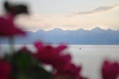 Velero en buen tiempo en un fondo del cielo y de montañas hermosos con las flores defocused en primero plano fotos de archivo libres de regalías