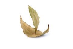 Velero hecho a partir de dos hojas del laurel en un fondo blanco Foto de archivo