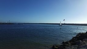 Veleros en Marina del Rey, California metrajes