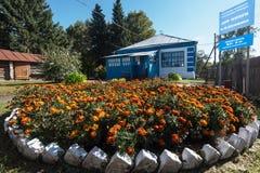 Velha escola onde estudou Vasily Shukshin na vila de Srostki Altaiskiy Krai Sibéria ocidental Rússia foto de stock royalty free