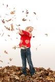 Velho de cinco anos adorável nas folhas Fotos de Stock Royalty Free