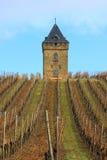 Velho, quadrado, torre Foto de Stock Royalty Free