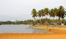 Veli lake, Kerala Stock Photo