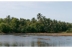 Veli Lake in Kerala, India Royalty Free Stock Photos