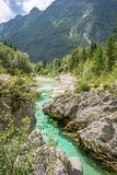 Velika Korita或伟大的峡谷在博韦茨,斯洛文尼亚附近的索查河河 美丽的生动的绿松石河小河在特里格拉夫峰国立公园, 图库摄影