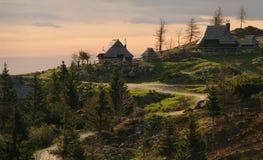 Velika planina Royaltyfri Foto