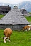 Velika Planina, Eslovenia foto de archivo libre de regalías
