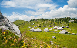 Velika Planina kulle, Slovenien Royaltyfri Foto