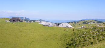 Velika planina plateau, Slovenia, Mountain village in Alps, wooden houses in traditional style, popular hiking Stock Photos