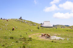 Velika planina plateau, Slovenia, Mountain village in Alps, wooden houses in traditional style, popular hiking Royalty Free Stock Image