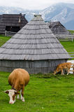 Velika Planina, Slovenia Royalty Free Stock Photo