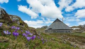 Velika planina Royalty Free Stock Image