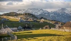 Velika Planina wzgórze, Slovenia Zdjęcia Royalty Free