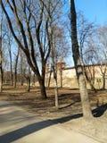 Velikii Novgorod Kreml royaltyfri bild
