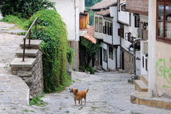 Veliko Tarnob, Bulgarije Royalty-vrije Stock Foto's
