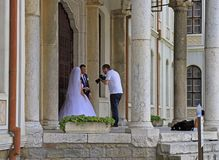 Man is shooting wedding outdoors in Veliko Tarnovo royalty free stock images