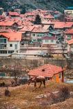 Velingrad en SPA huvudstad av Balkans i den Rhodope Mountsins Bulgarien arkivbilder