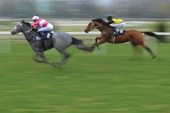 Velka Chuchle prix - horse racing Royalty Free Stock Photos